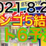 【2021.8.26】ビンゴ5結果&ロト6予想!