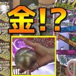 【超ギャンブル】色々クレイジーすぎる3000円ガチャで金カプセル出ちゃいましたww