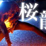 【技単】桜龍-ロト♪Candy【Fly-N/ヲタ芸】