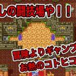 【ドラクエⅢ】懐かしの闘技場で遊ぶ!勇者、ギャンブルにハマるww【#2】