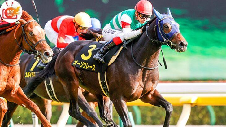 【セントライト記念予想オッズ】今年の弥生賞馬タイトルホルダーが単勝2.0倍で予想1番人気