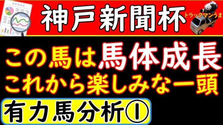 神戸新聞杯2021年の予想オッズ上位馬を分析パート①!この馬成長著しいぞ!