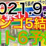 【2021.9.9】ビンゴ5結果&ロト6予想!