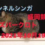 チャンネルシンガ!10月19日盛岡オッズパークロトキャリー発生!緊急参戦編!
