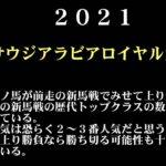【ゼロ太郎】「サウジアラビアロイヤルカップ2021」出走予定馬・予想オッズ・人気馬見解