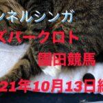 オッズパークロト2021年10月13日園田競馬買ってみた
