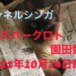 チャンネルシンガ2021年10月14日オッズパークロト園田競馬編